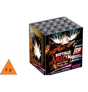 BATTERIE BUFFALO BILL 20 DEPARTS